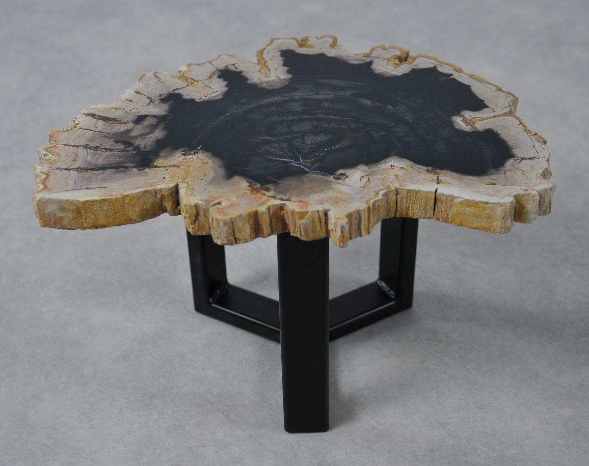 Coffee table petrified wood 36161