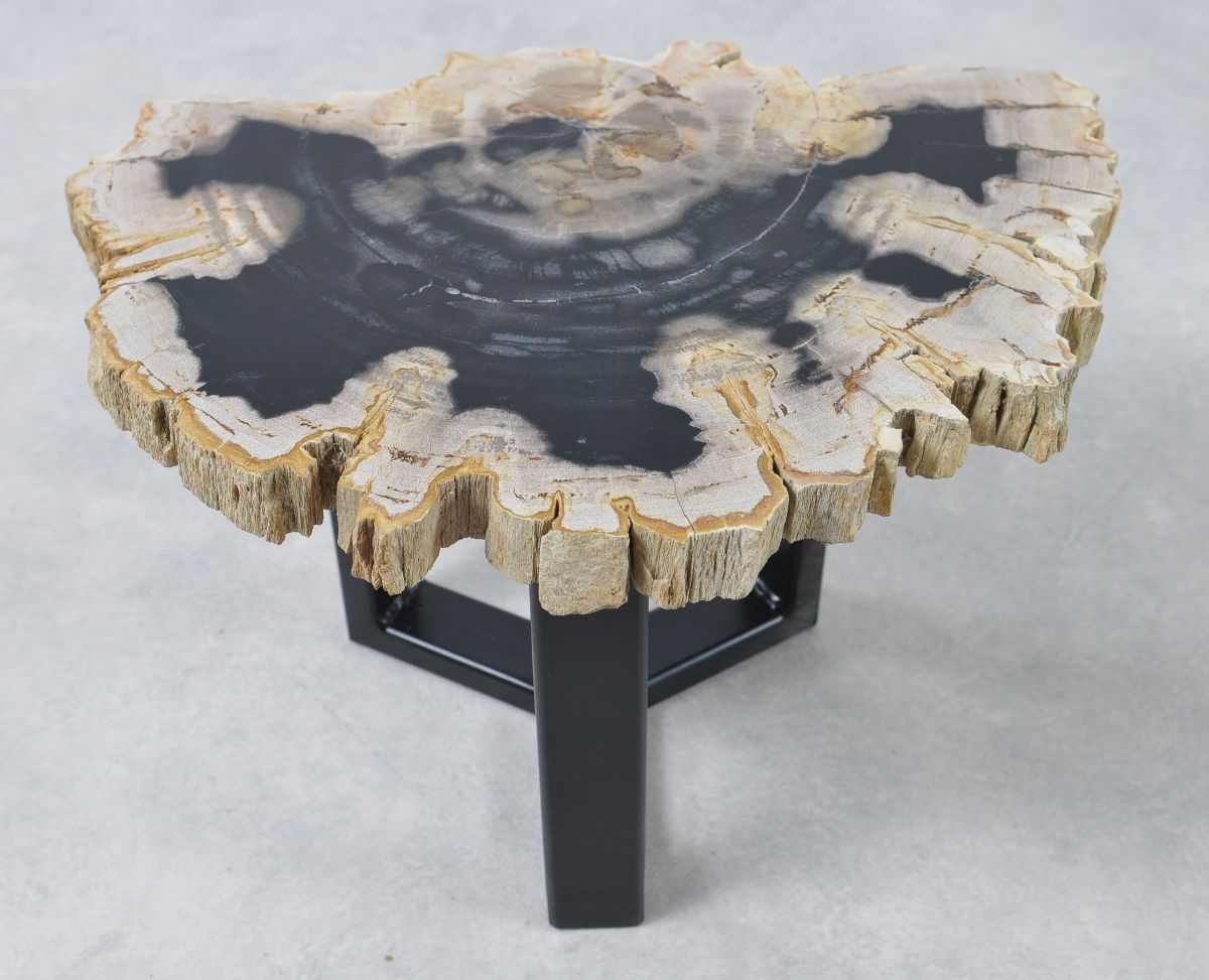 Coffee table petrified wood 36168