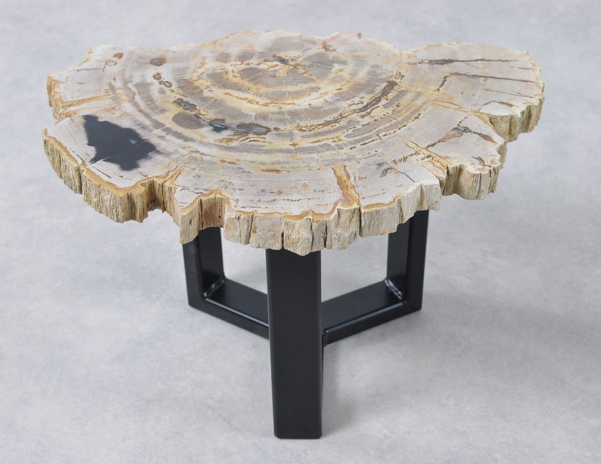 Coffee table petrified wood 36169