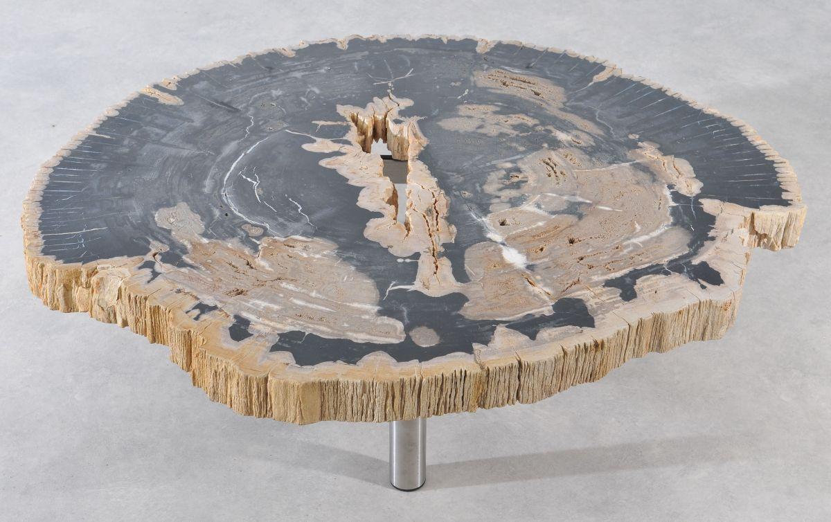 Coffee table petrified wood 36180