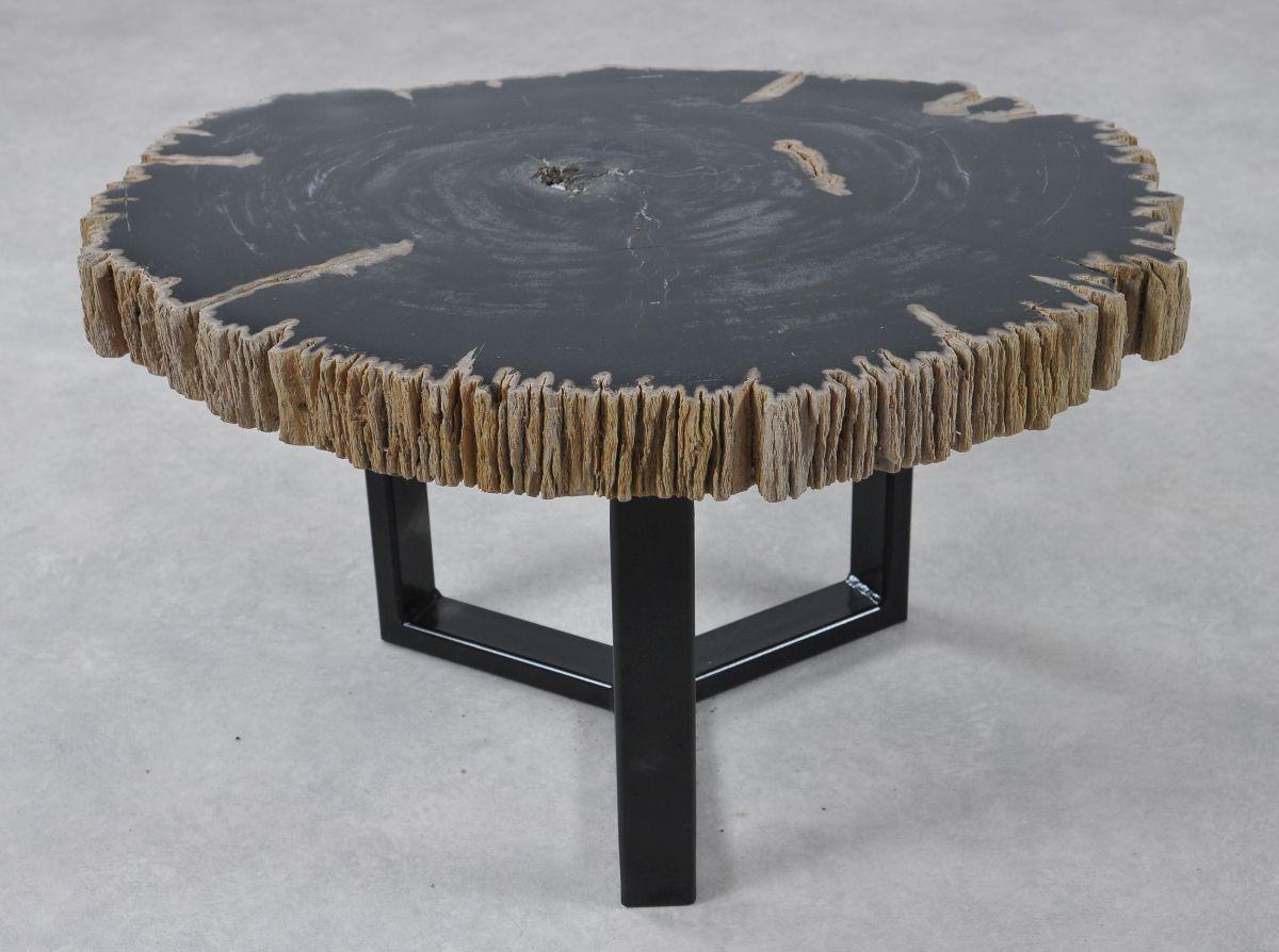 Coffee table petrified wood 36182