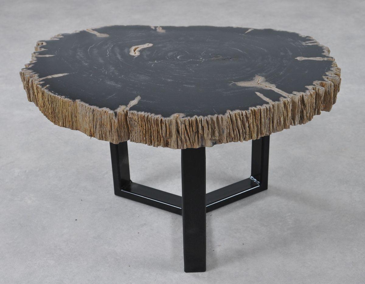Coffee table petrified wood 36183