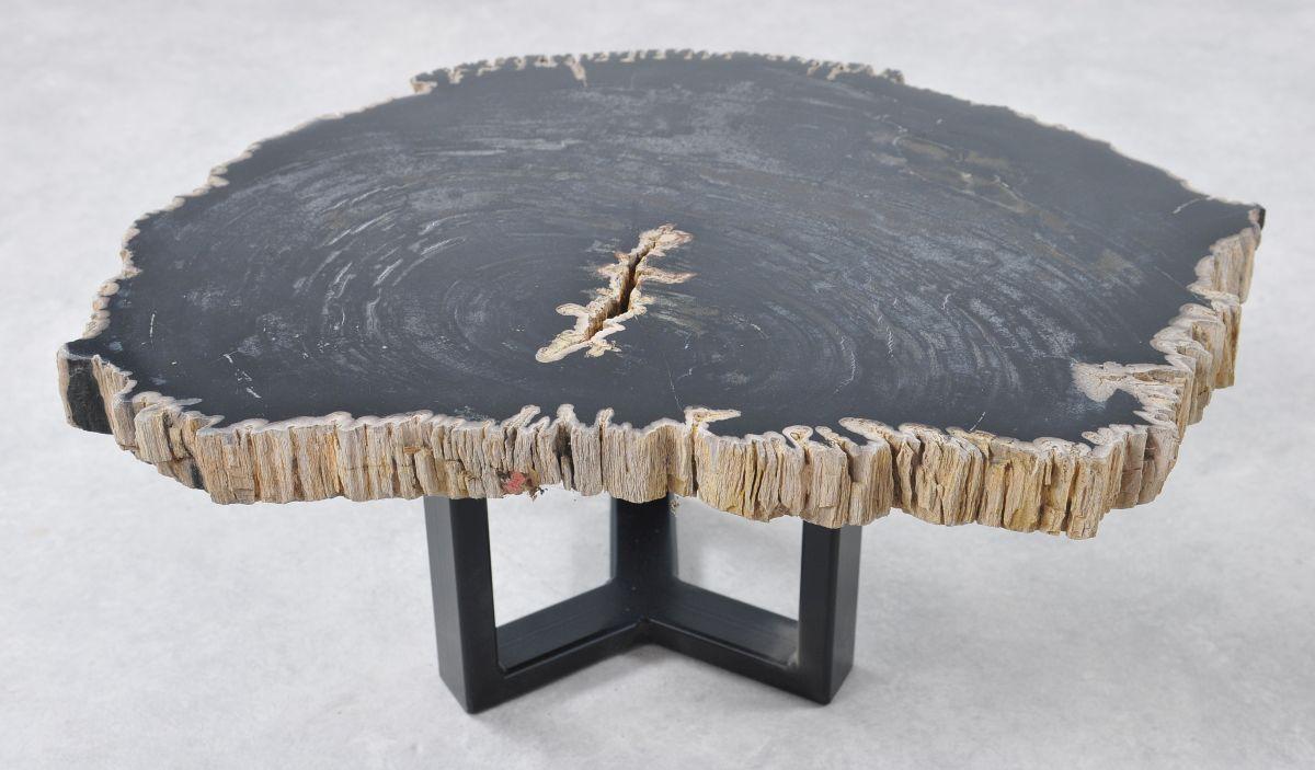 Coffee table petrified wood 36191
