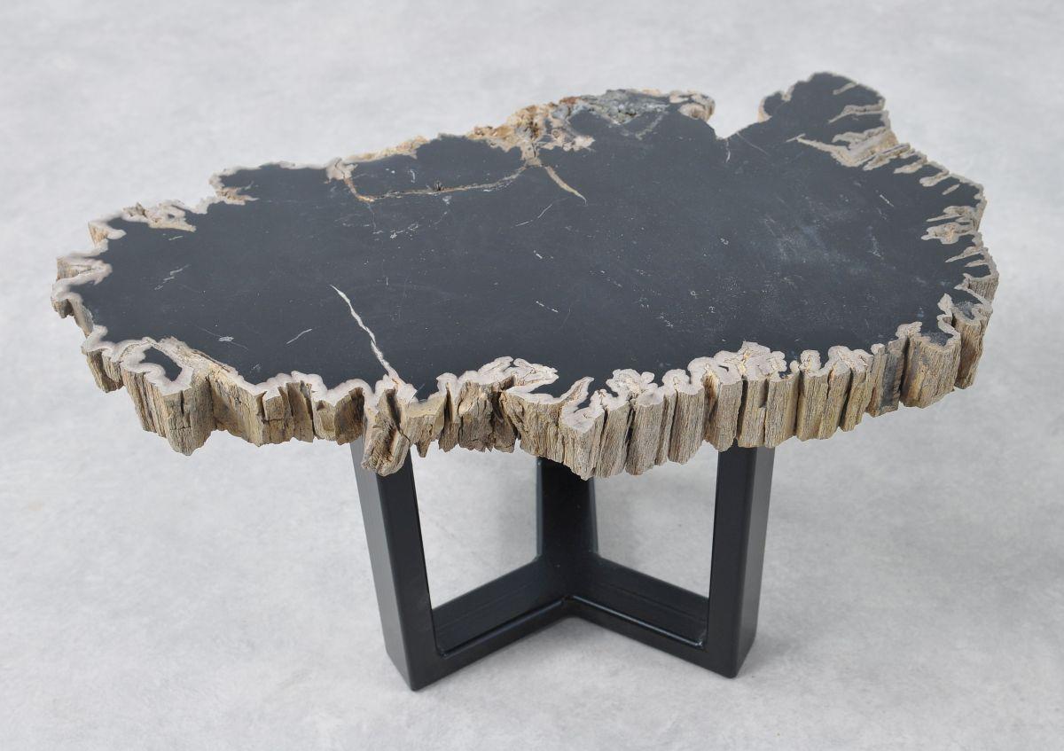 Coffee table petrified wood 36192