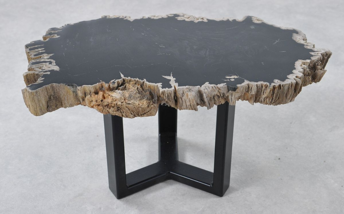 Coffee table petrified wood 36193
