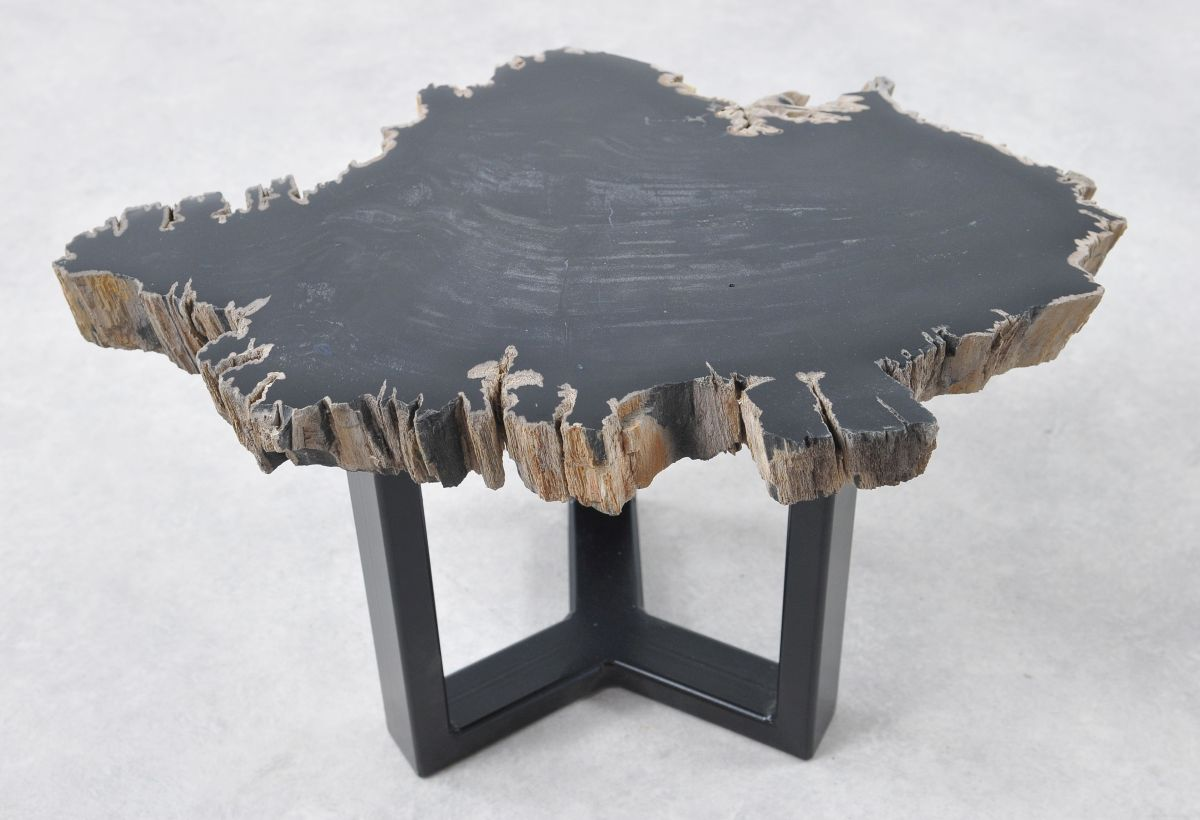 Coffee table petrified wood 36194