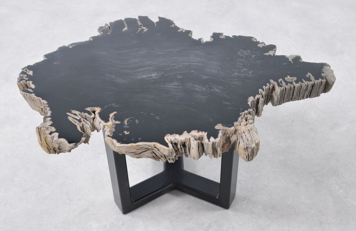 Coffee table petrified wood 36195