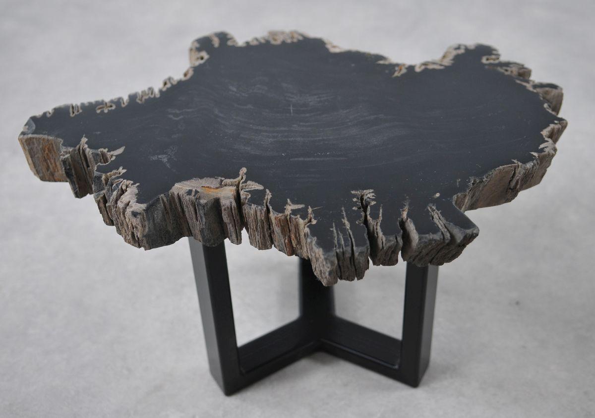 Coffee table petrified wood 36196