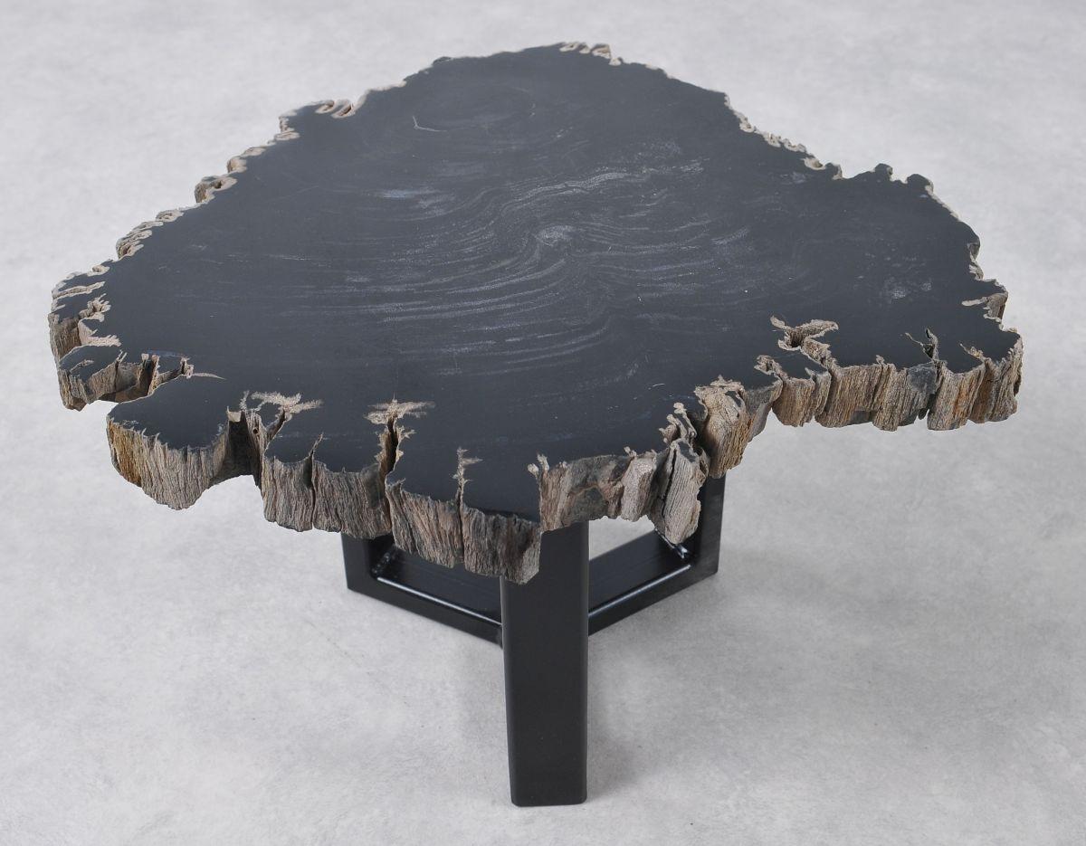 Coffee table petrified wood 36198