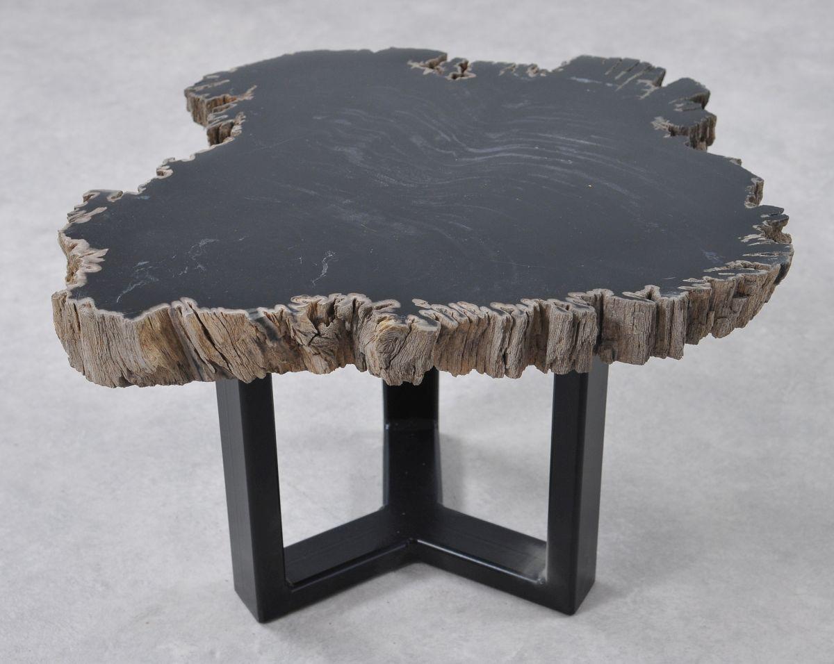 Coffee table petrified wood 36199