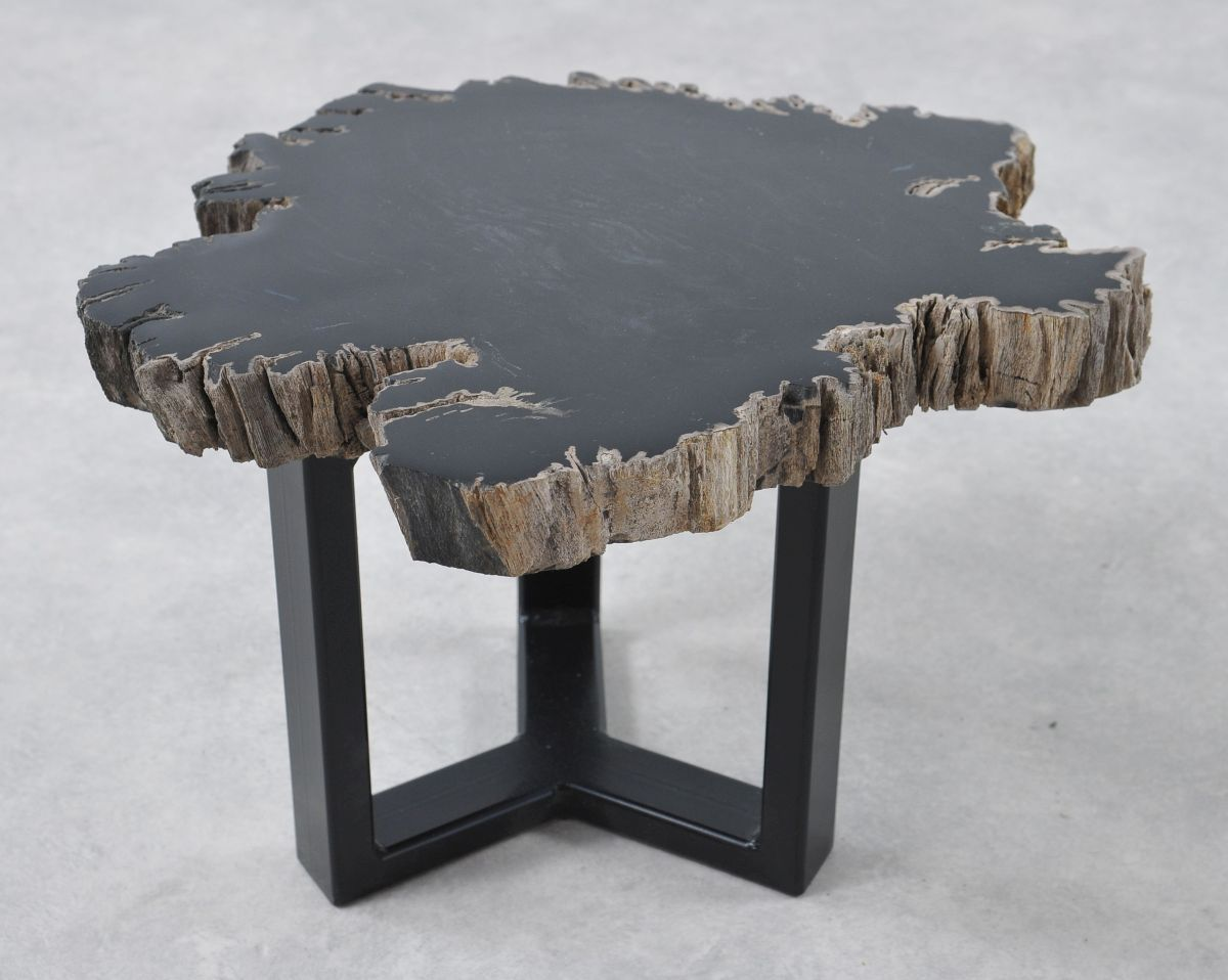Coffee table petrified wood 36201