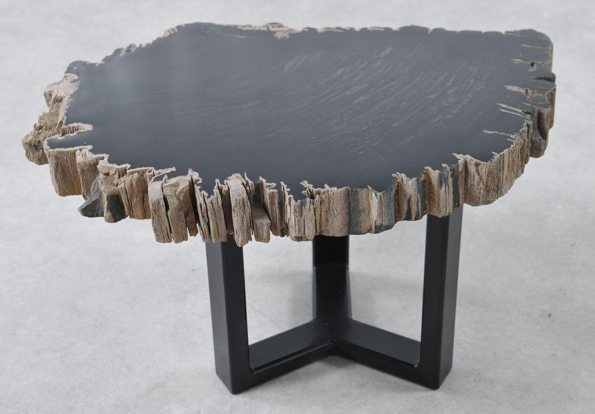 Coffee table petrified wood 36203