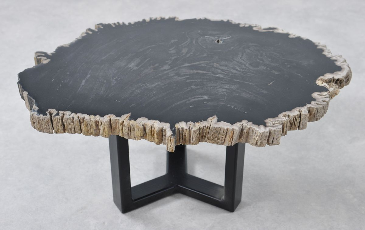 Coffee table petrified wood 36204