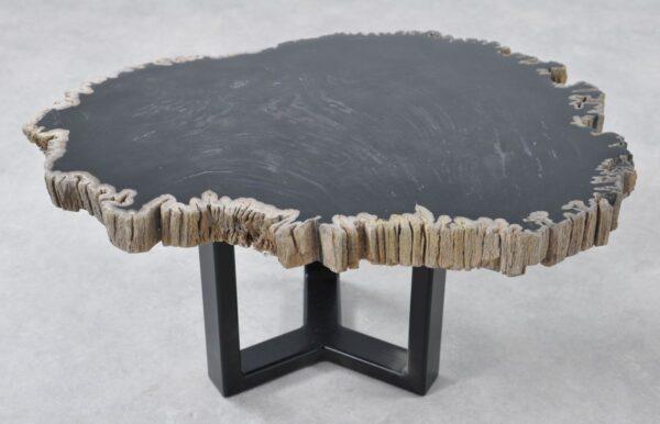Coffee table petrified wood 36207