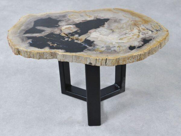 Coffee table petrified wood 36220
