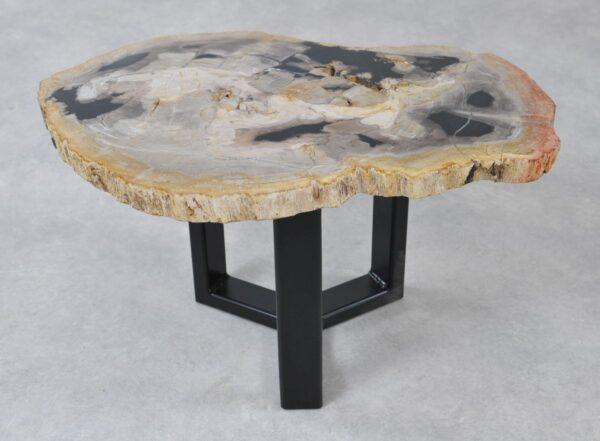 Coffee table petrified wood 36221