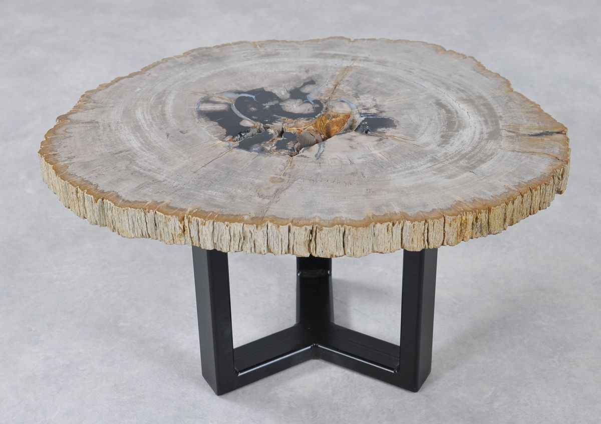 Coffee table petrified wood 36231