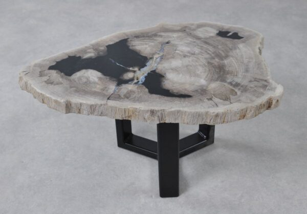 Coffee table petrified wood 36232