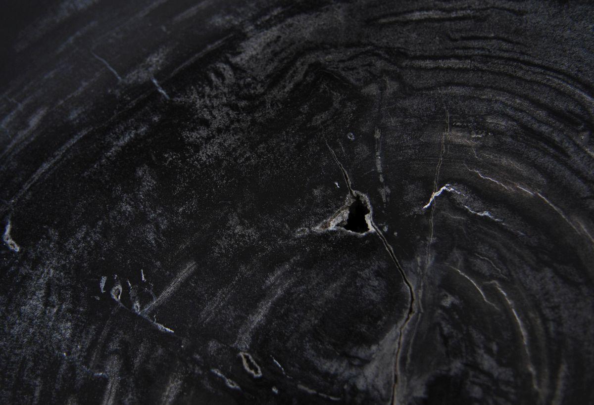 Coffee table petrified wood 36239