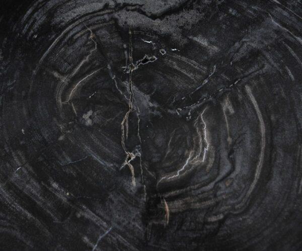 Coffee table petrified wood 36240