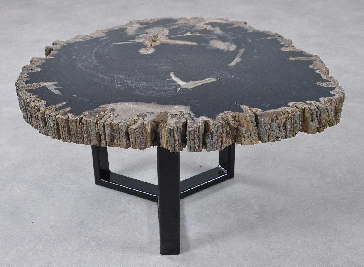 Coffee table petrified wood 36241