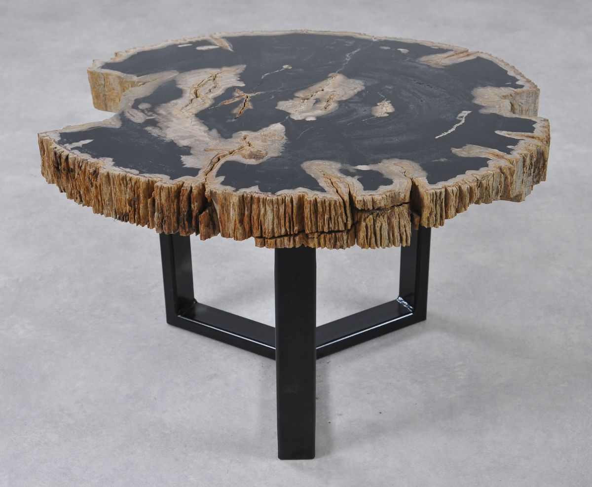 Coffee table petrified wood 36243
