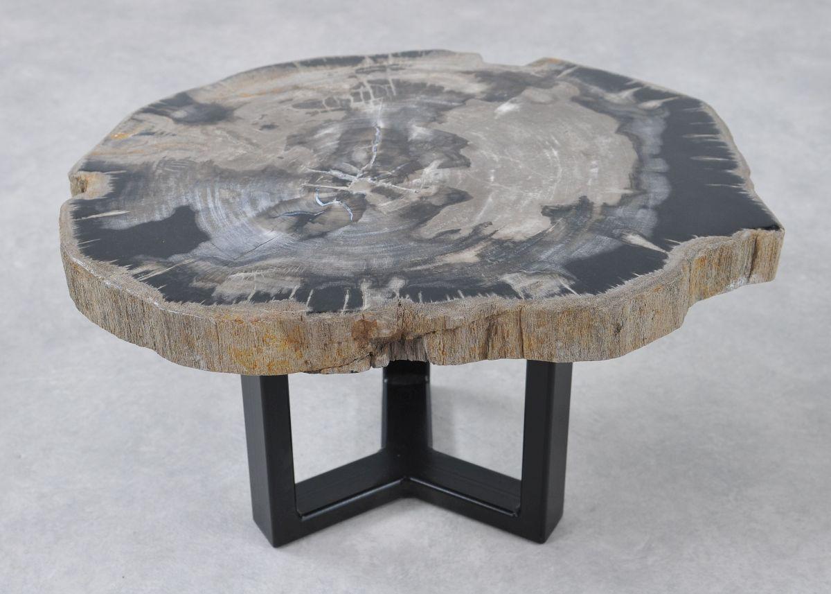 Coffee table petrified wood 36244