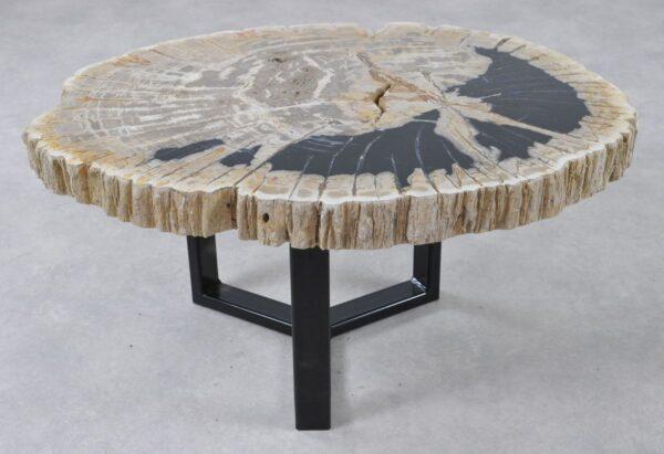 Coffee table petrified wood 36263