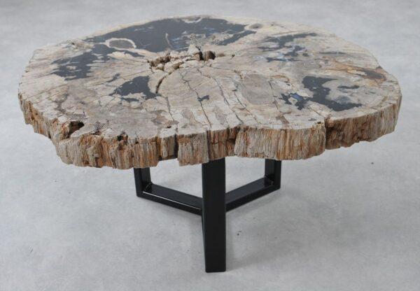 Coffee table petrified wood 36294