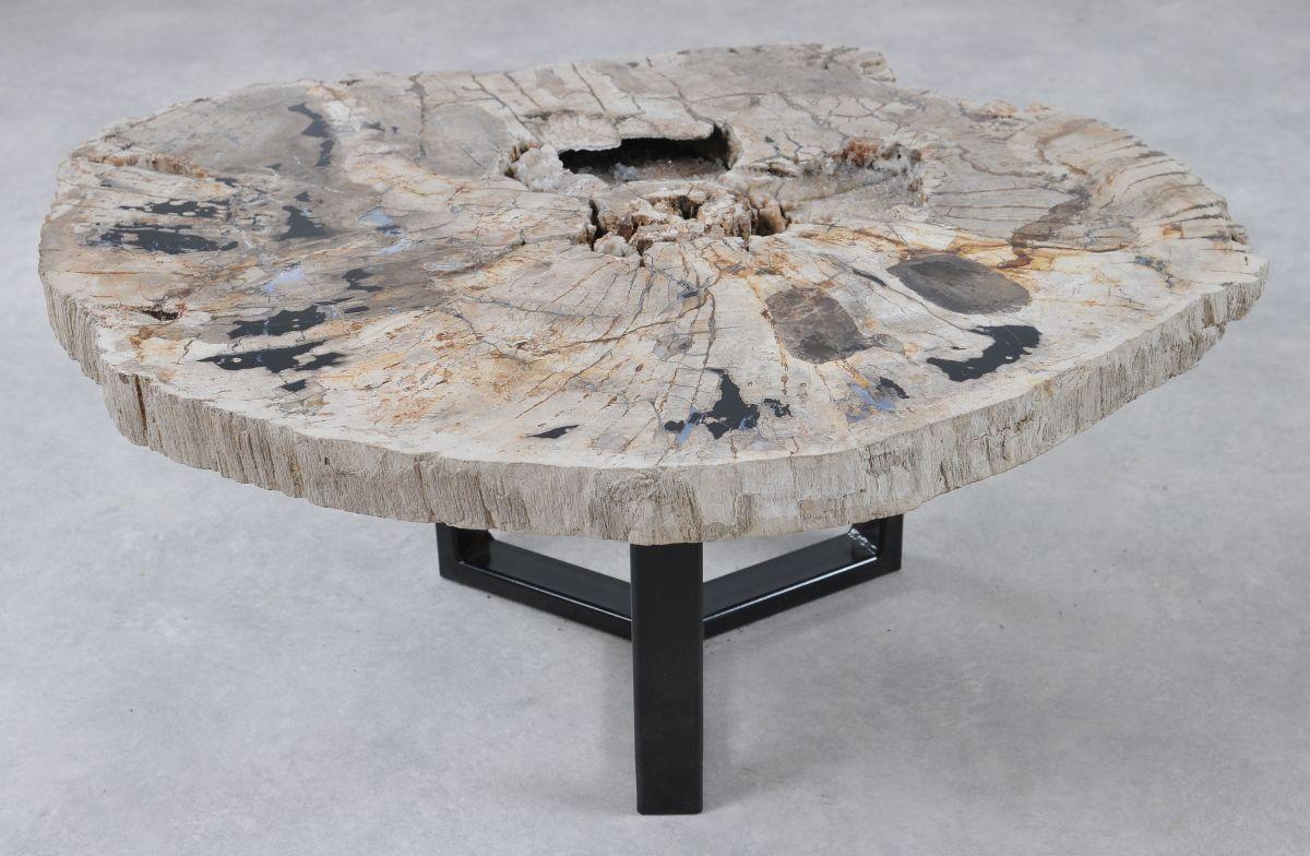 Coffee table petrified wood 36296