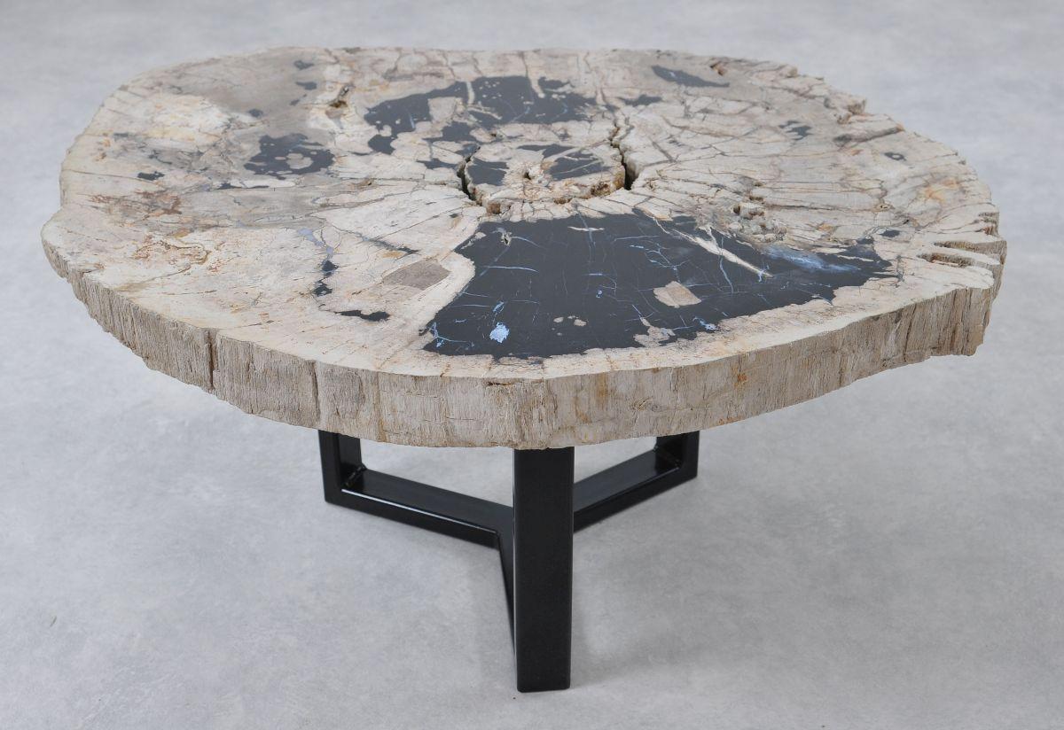 Coffee table petrified wood 36297