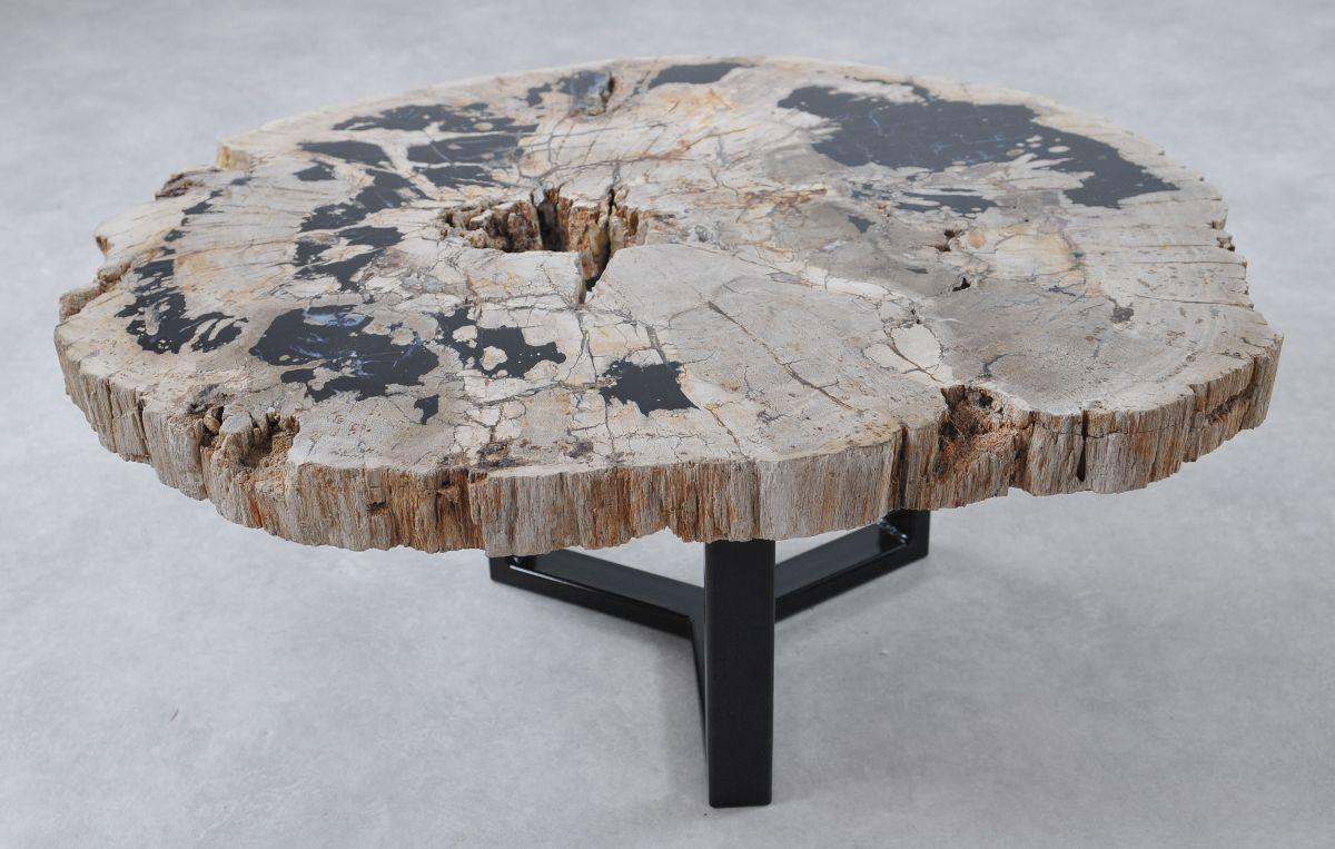 Coffee table petrified wood 36299