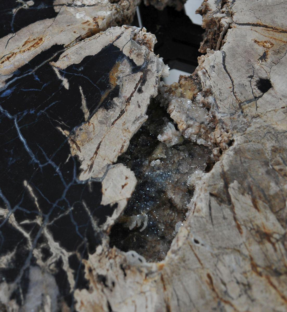 Coffee table petrified wood 36302