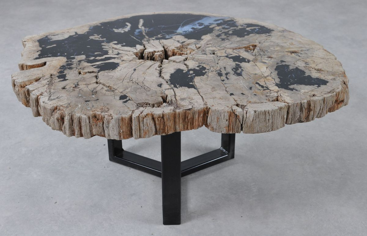 Coffee table petrified wood 36303
