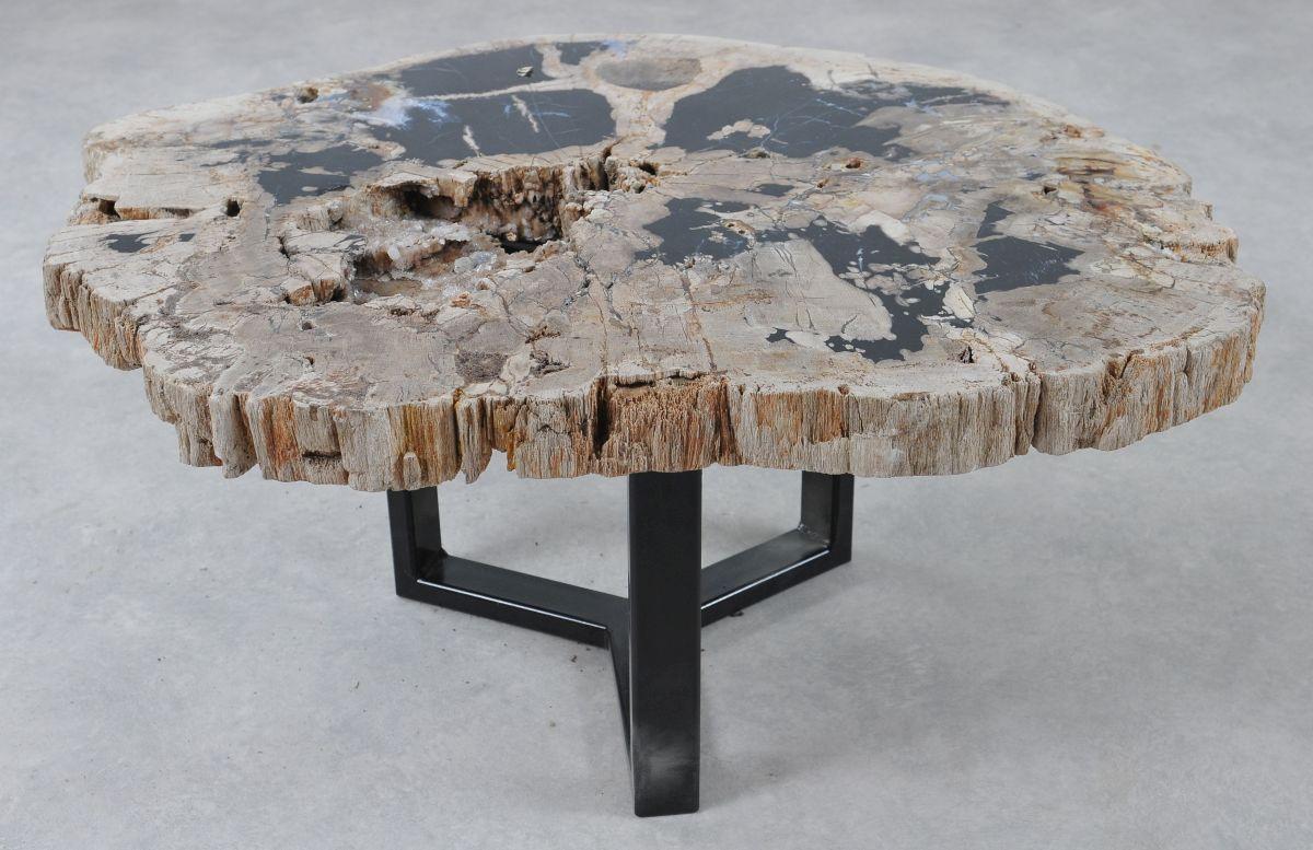 Coffee table petrified wood 36305