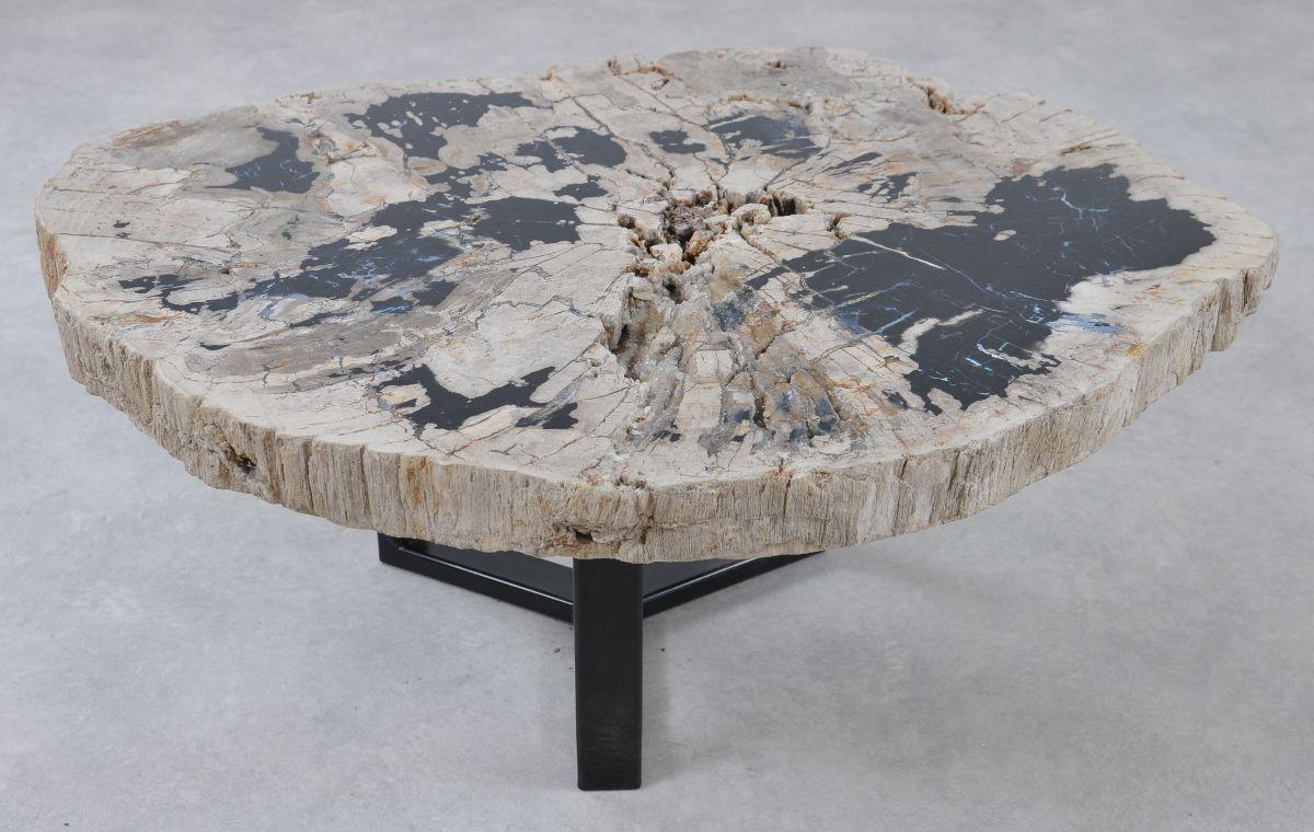 Coffee table petrified wood 36307