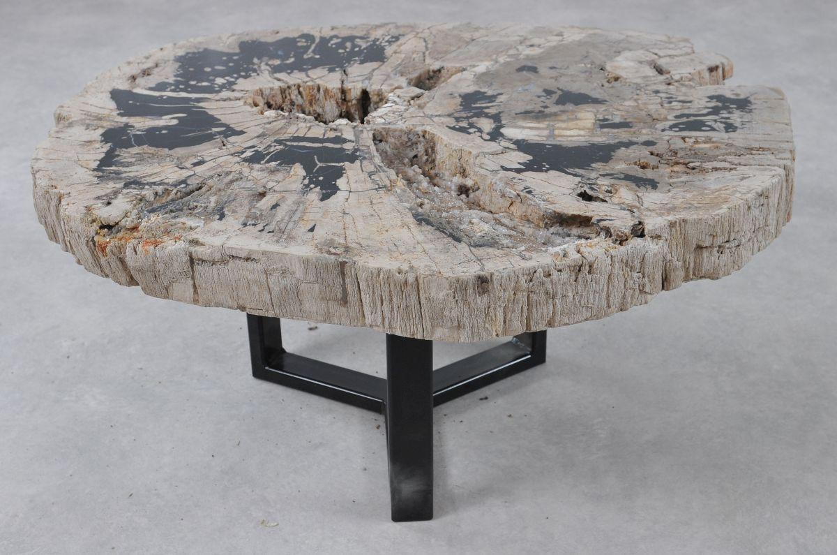 Coffee table petrified wood 36308