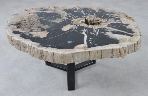 Coffee table petrified wood 36309