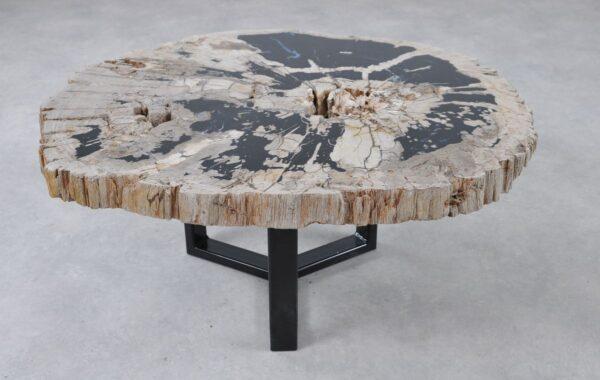 Coffee table petrified wood 36310