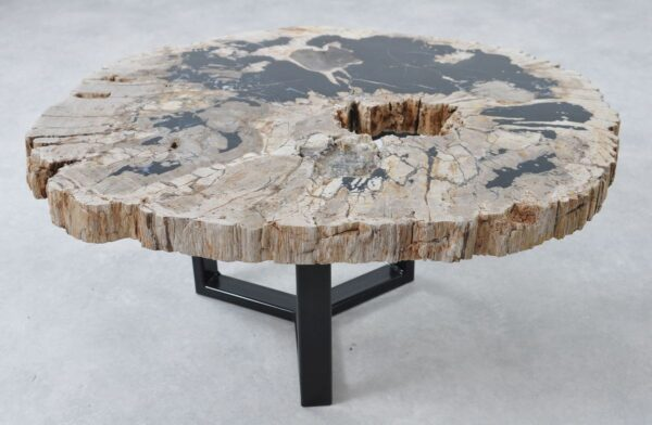 Coffee table petrified wood 36313