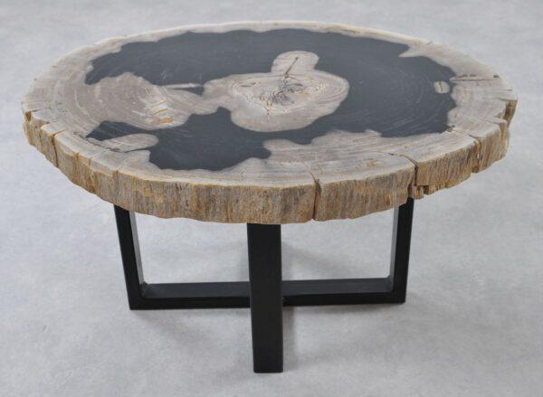 Coffee table petrified wood 36364