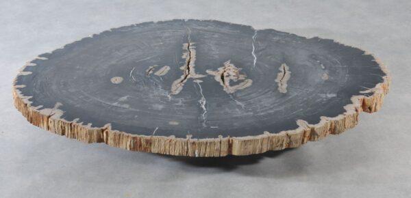 Coffee table petrified wood 36369