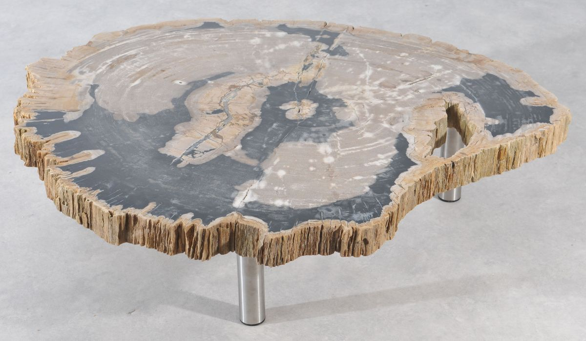 Couchtisch versteinertes Holz 36145