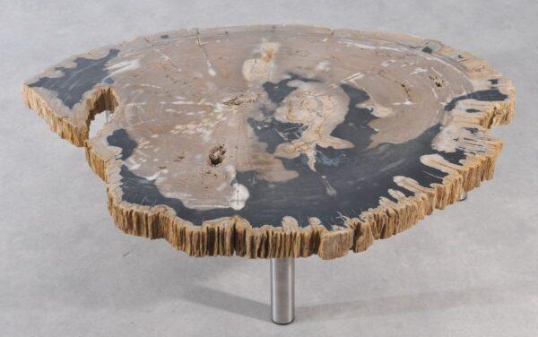 Couchtisch versteinertes Holz 36148