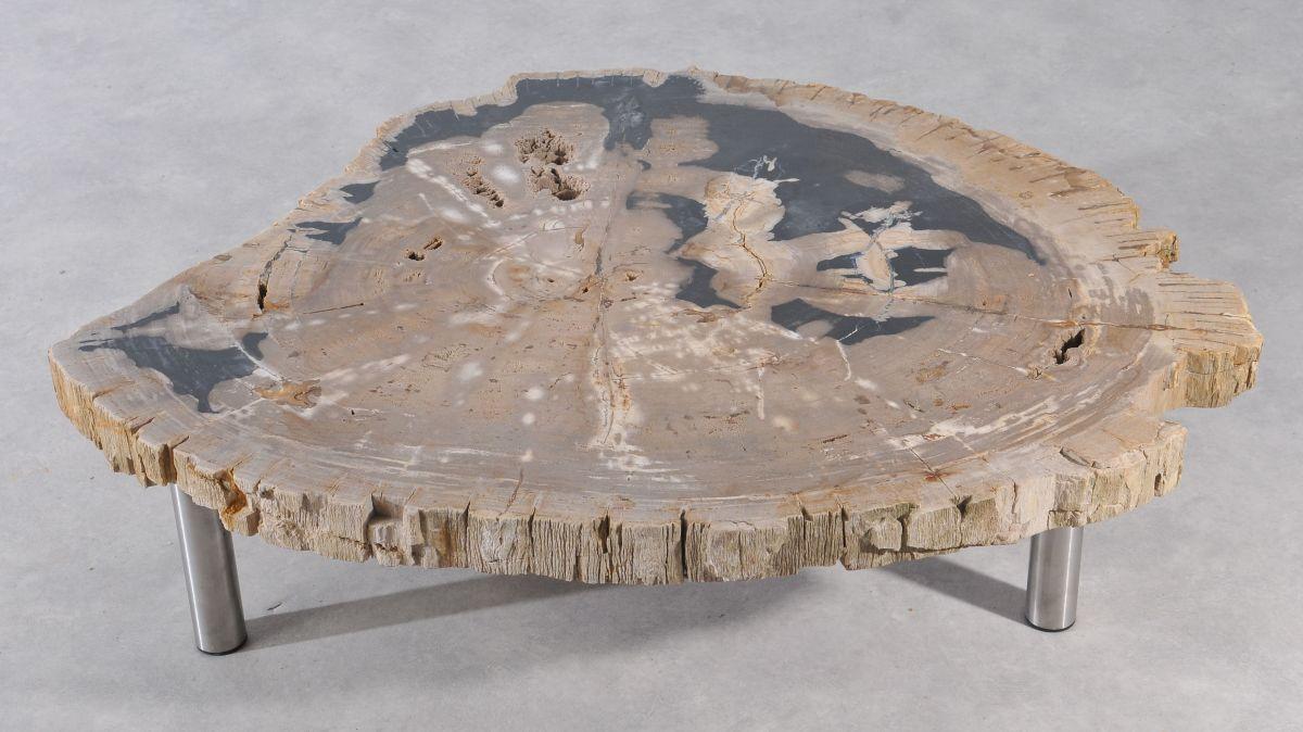 Couchtisch versteinertes Holz 36149