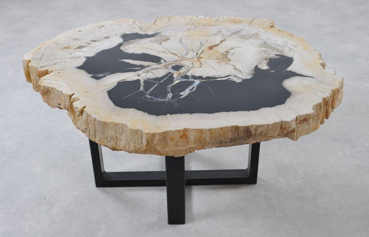 Couchtisch versteinertes Holz 36151