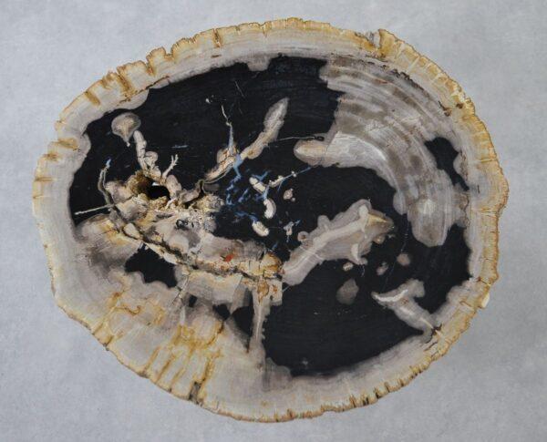 Couchtisch versteinertes Holz 36155