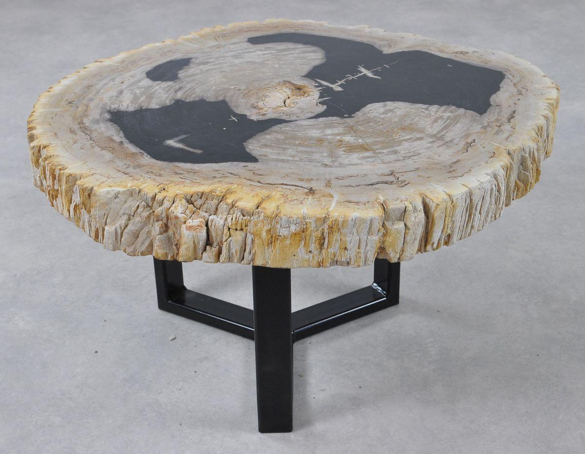 Couchtisch versteinertes Holz 36157