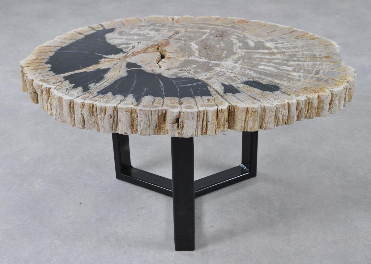Couchtisch versteinertes Holz 36158