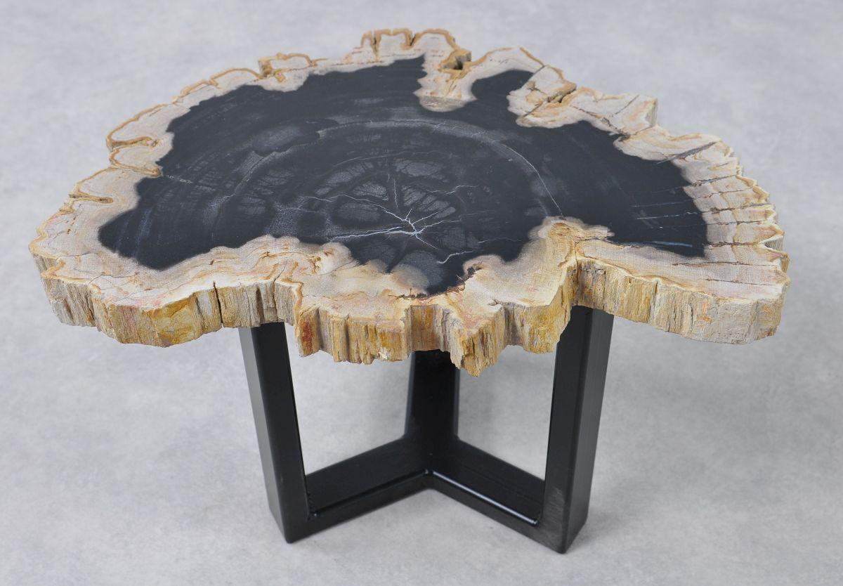 Couchtisch versteinertes Holz 36159